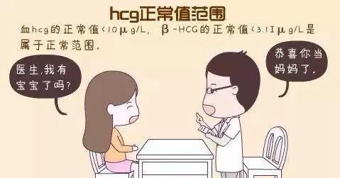 抗体世界-HCG正常值范围