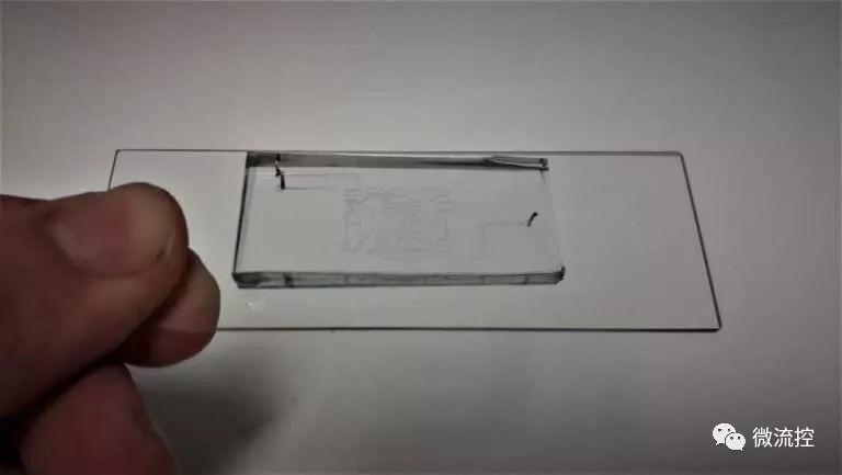 抗体世界-聚合物基微流控芯片
